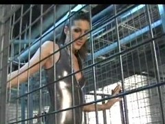 Perverted honeys in the cages