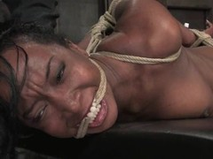 Luscious swarthy floozy acquires bound up and tortured