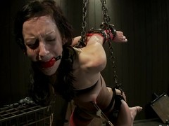 Elise Graves had at no time tortured that hard