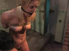 Hollie Stevens acquires tortured, whipped jointly with drilled remarcably well