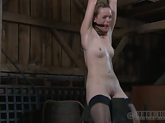 Caged beauty gets a salacious whipping for say no to smooth butt
